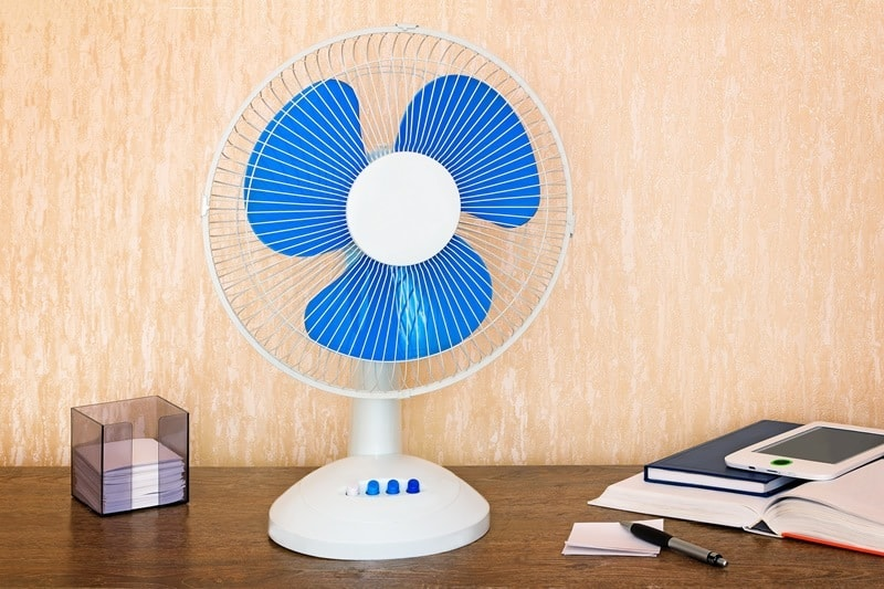 Best Oscillating Fan Reviews – 5 Fans to Consider
